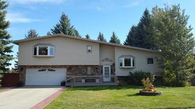 Great Falls Single Family Home For Sale: 2001 11th St SW