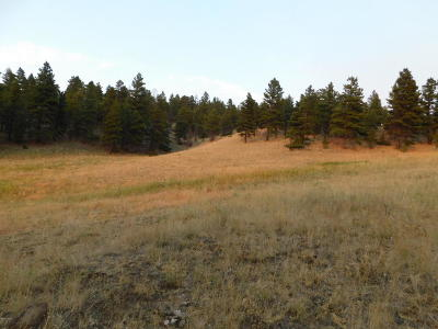 Cascade  Residential Lots & Land For Sale: Mt View Ln #MK 10E-1