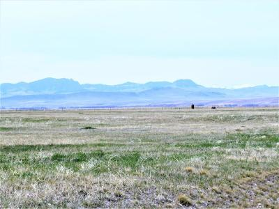 Cascade  Residential Lots & Land For Sale: Lot B4 Rising Plains