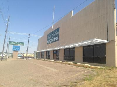 Great Falls  Commercial For Sale: 901 Ninth St N