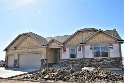 Great Falls Single Family Home For Sale: 1106 Choteau Ave NE