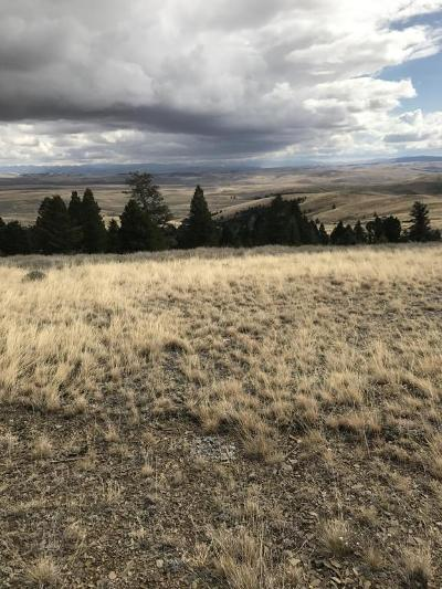 White Sulphur Springs Residential Lots & Land For Sale: 231 Mountain View Trail