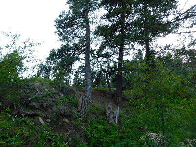 Cascade  Residential Lots & Land For Sale: Pine Coulee #Mk 5-2