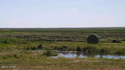 Choteau Farm For Sale: 1287 Highway 220