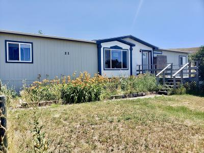 Great Falls  Single Family Home For Sale: 21 Teresa Ln