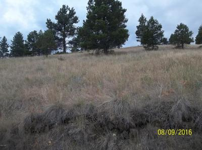 Cascade Residential Lots & Land For Sale: Box Canyon #MK-14