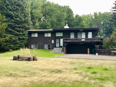 Great Falls Single Family Home For Sale: 10 Brookwood Ln