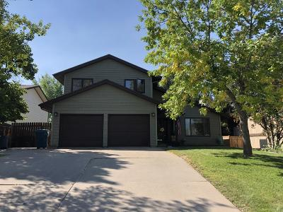 Great Falls Single Family Home For Sale: 3904 13th Ave S