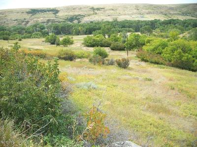 Belt Farm For Sale: Orr Coulee Rd