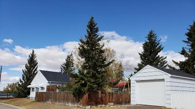Single Family Home For Sale: 337 2nd Ave SE