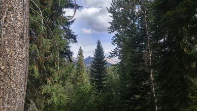 Condon, Potomac, Seeley Lake Residential Lots & Land For Sale: NHN Remicks Rd