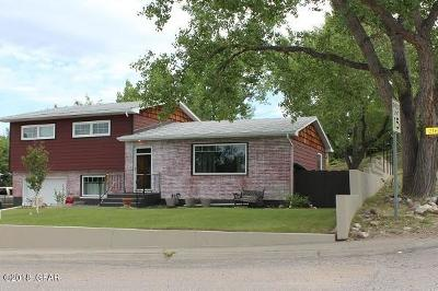 Single Family Home For Sale: 102 12th Ave N