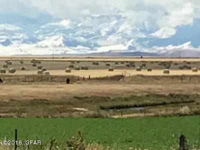 Cascade County, Lewis And Clark County, Teton County Farm For Sale: 1421 2nd Rd SW #Tract 2