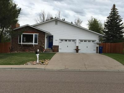 Great Falls Single Family Home For Sale: 904 24th Ave SW