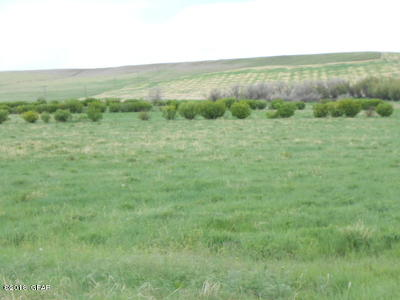 Cascade County, Lewis And Clark County, Teton County Farm For Sale: Vinyard Rd