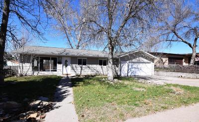 Great Falls Single Family Home For Sale: 265 17 Ave S