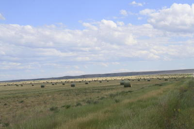 Cascade County, Lewis And Clark County, Teton County Farm For Sale: NHN 6th Lane NW & 4th Road NW