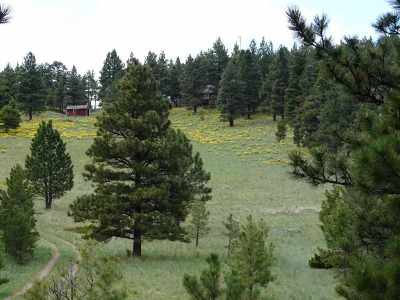 Wolf Creek Residential Lots & Land For Sale: French Creek Rd