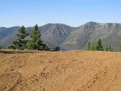 Wolf Creek Residential Lots & Land For Sale: Lots 1,  2 Denton Mtn Rd
