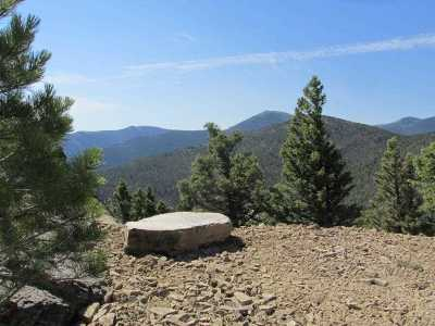 Wolf Creek  Residential Lots & Land For Sale: Denton Mtn 9