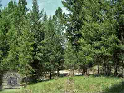 Missoula County Residential Lots & Land For Sale: 675 Montana Drive
