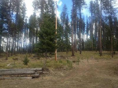 Seeley Lake Residential Lots & Land For Sale: Nhn Highway 83 North