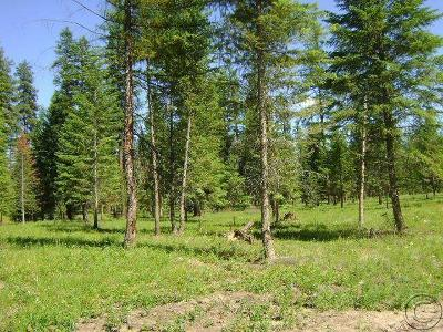 Mineral County Residential Lots & Land For Sale: Lot 17 Quarter Circle Cross
