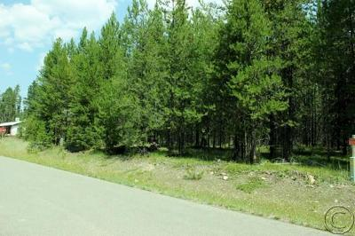 Seeley Lake MT Residential Lots & Land For Sale: $34,500