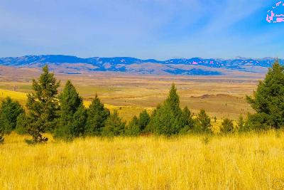 Butte Residential Lots & Land For Sale: Lot 89/92 Gregson Lane