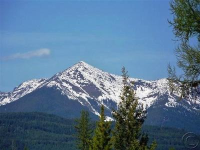 Seeley Lake MT Residential Lots & Land For Sale: $285,000