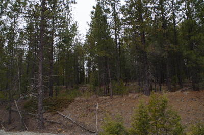 Marion Residential Lots & Land Under Contract Taking Back-Up : Nhn Us Highway 2 West