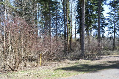 Columbia Falls Residential Lots & Land For Sale: 728 Seminole Lane