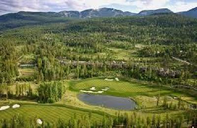 Whitefish Residential Lots & Land For Sale: 161 South Shooting Star Circle