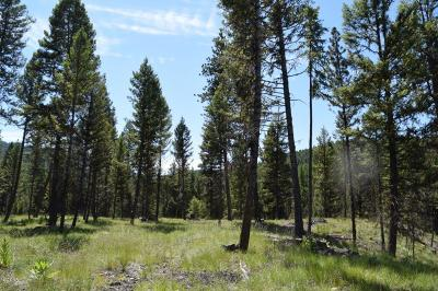 Missoula County Residential Lots & Land For Sale: 157 Grandview Court