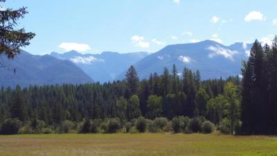 Lake County Residential Lots & Land For Sale: 36932 Mt Hwy 83