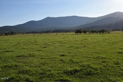 Arlee MT Residential Lots & Land For Sale: $125,000