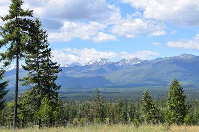 Missoula County Residential Lots & Land For Sale: Nhn Antler Ridge Road