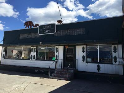 Lincoln County Commercial For Sale: 411 Mineral Avenue
