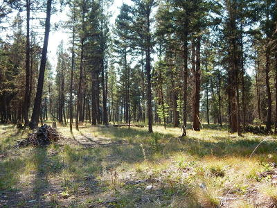 Seeley Lake MT Residential Lots & Land For Sale: $79,000