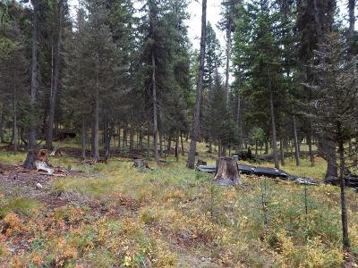 Seeley Lake MT Residential Lots & Land For Sale: $99,800