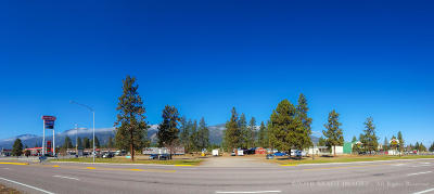 Florence Residential Lots & Land For Sale: Unk Hwy 93
