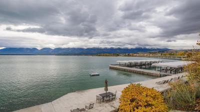 Lake County Single Family Home For Sale: 202 Shoreline Drive