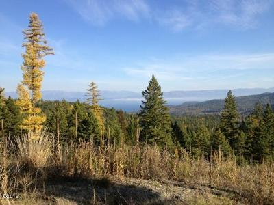 Lakeside Residential Lots & Land For Sale: Nhn Blacktail Road