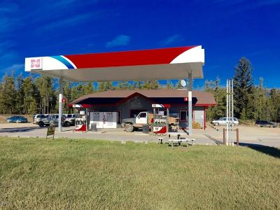 Flathead County Commercial For Sale: 8205 Highway 2 West
