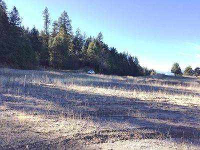 Bigfork Residential Lots & Land For Sale: Lot 2 Sportsmans Lane