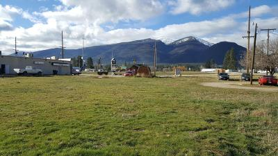 Stevensville Residential Lots & Land For Sale: Lot 1 Wye Highway 93