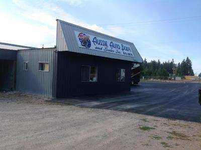 Lake County Commercial For Sale: 41188 Old Us Highway 93