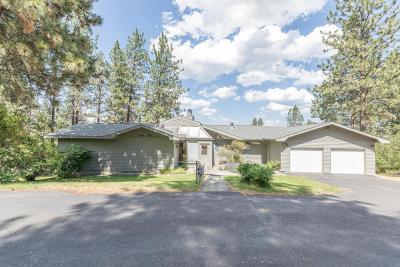 Missoula Single Family Home For Sale: 620 Big Flat Road