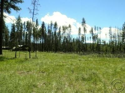 Seeley Lake MT Residential Lots & Land For Sale: $53,500