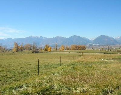 Corvallis Residential Lots & Land For Sale: Lot 7 Mountain View Orchards